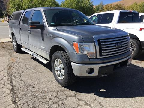2012 Ford F-150 for sale in Hailey, ID