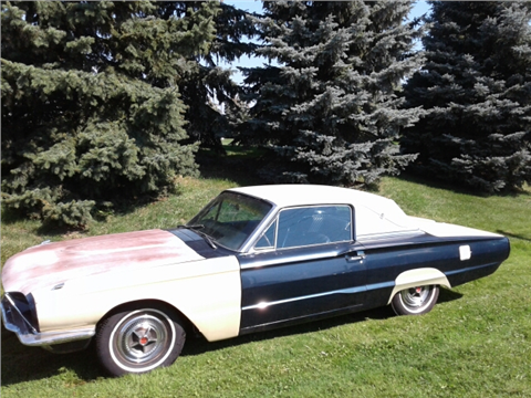 1966 Ford Thunderbird for sale in Clinton Township, MI
