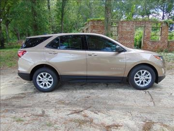 2018 Chevrolet Equinox for sale in Swainsboro, GA