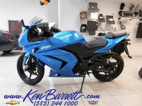 2010 Kawasaki KLX250 for sale in Batavia, NY