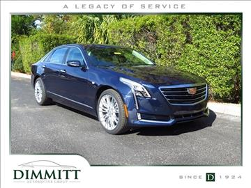 dimmitt automotive group clearwater fl view vehicle autos post. Cars Review. Best American Auto & Cars Review